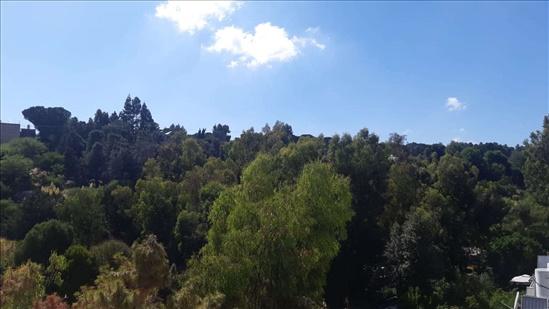 דירה למכירה 5 חדרים בירושלים ניות