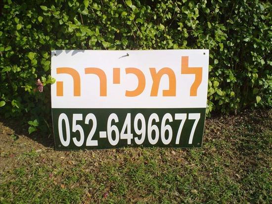 דירה למכירה 5 חדרים בתל אביב יפו למד פרופ יובל נאמן
