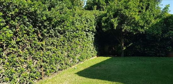 בית פרטי למכירה 7 חדרים ברמת גן קריית קריניצי
