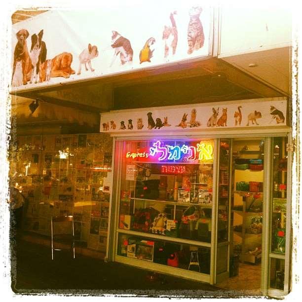 חנויות להשכרה
