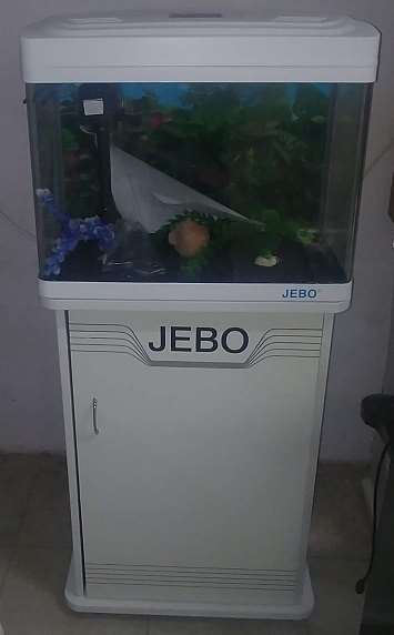 JEBO דגים - אקוואריום