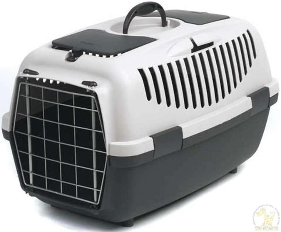 חתולים - ציוד ואביזרים