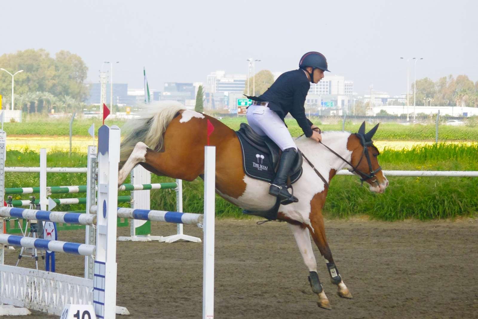 סוסים - פיינט