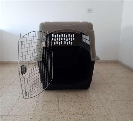 כלוב טיסה לכלב