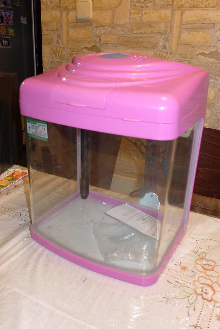 תמונה 4 ,דגים אקוואריום   אקוואריום למכירה באשדוד