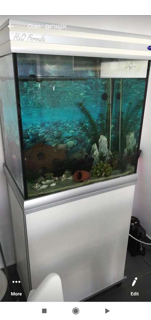 דגים - ציוד ואביזרים