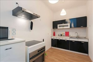 דירת סטודיו להשכרה 1 חדרים ב רובע 13
