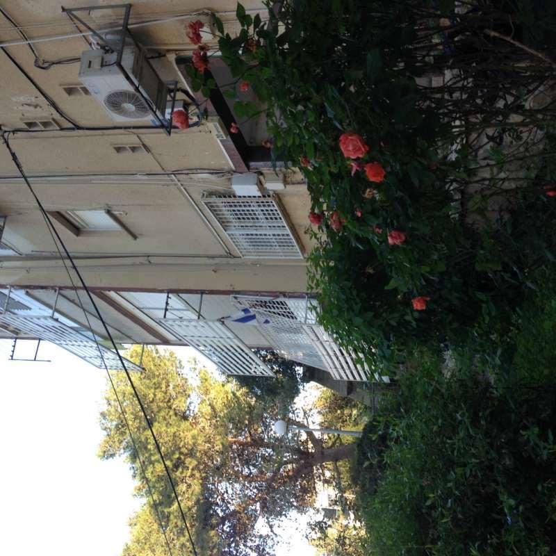 דירה, 2.5 חדרים, בודנהיימר, חיפה