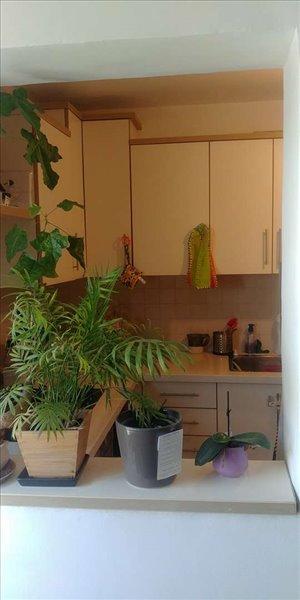 דירה להשכרה 3 חדרים בירושלים בן טבאי