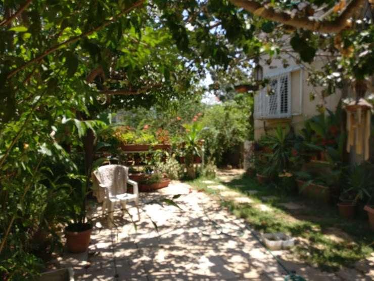 תמונה 2 ,דירה 4 חדרים עולי הגרדום רמת החייל תל אביב יפו