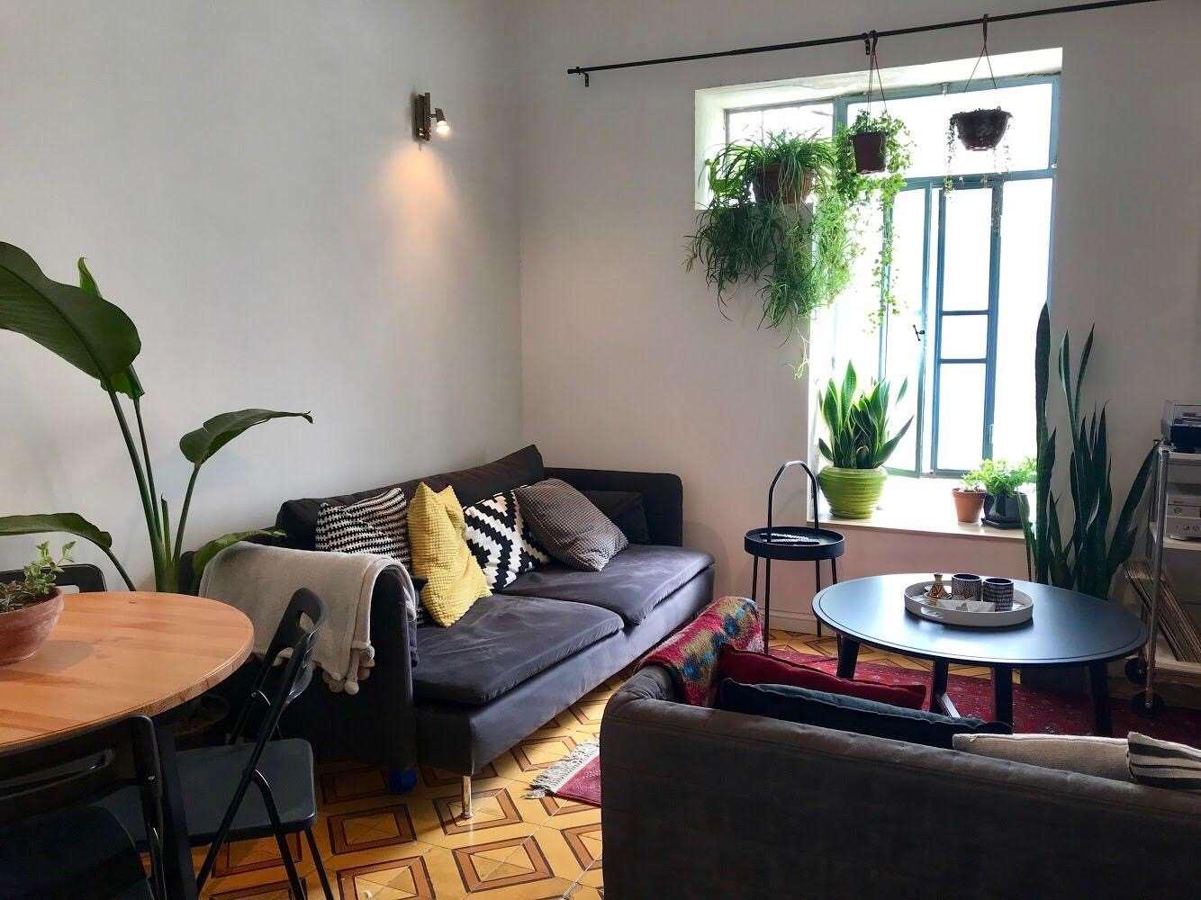 דירה, 2 חדרים, השנית , תל אביב יפו