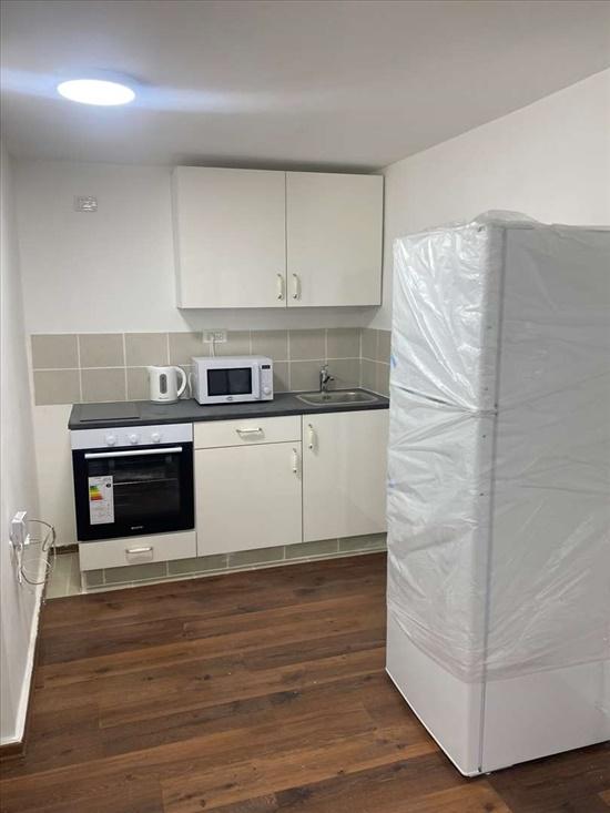 יחידת דיור להשכרה 1 חדרים בבני ציון האגוז