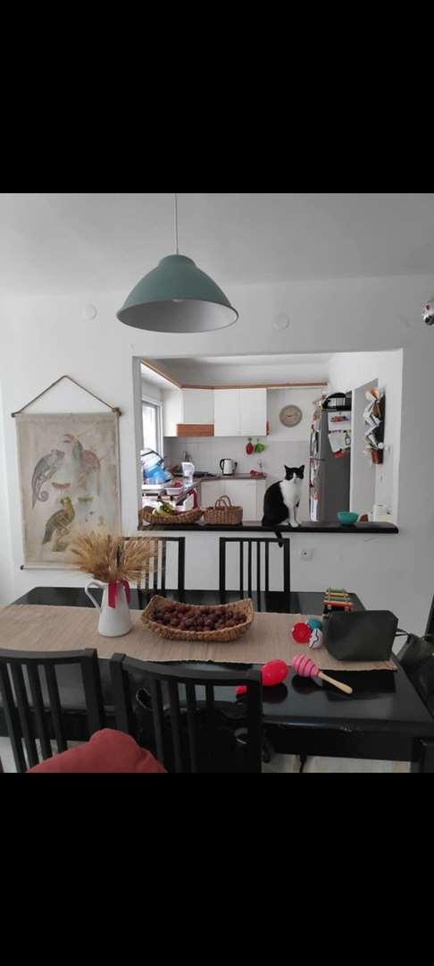 דירה להשכרה 4 חדרים בחיפה שדרות מוריה
