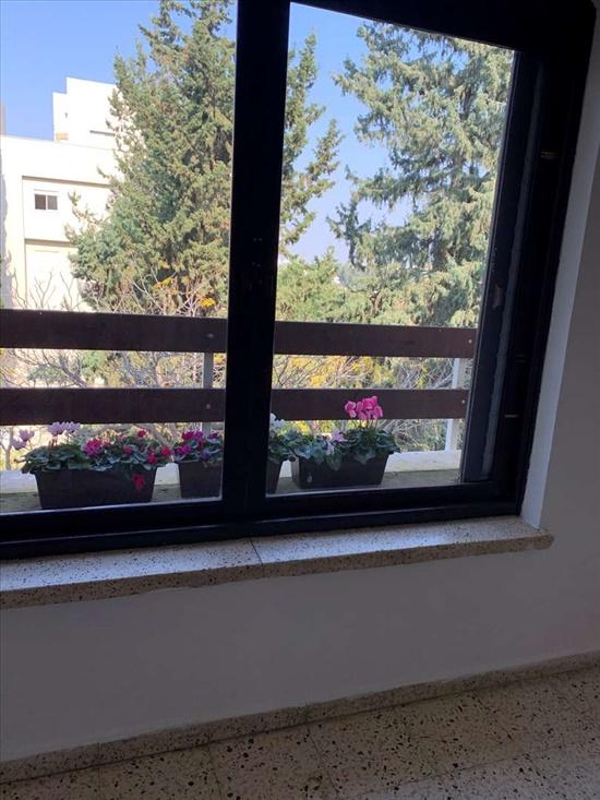 דירה להשכרה 4 חדרים ברעננה החשמונאים 12