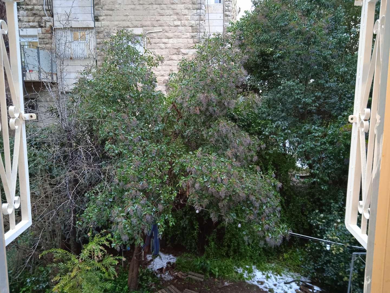 תמונה 4 ,דירה 3 חדרים ניל''י גבעת הורדים, רסקו ירושלים