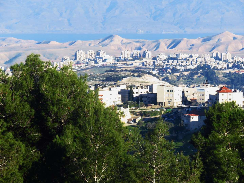 דירה להשכרה 4 חדרים בירושלים בר כוכבא הגבעה הצרפתית