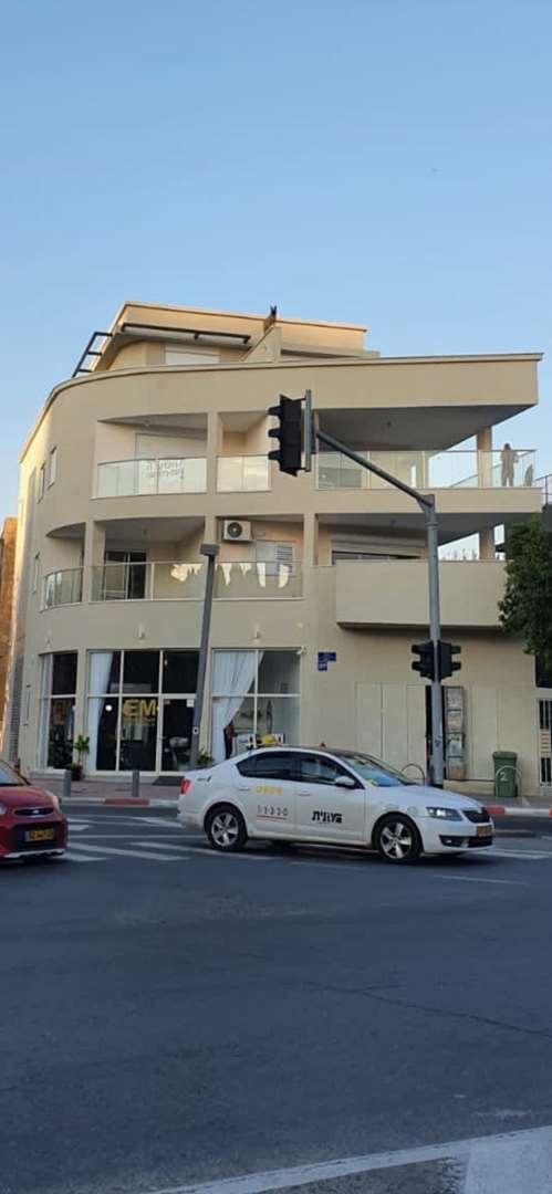 דופלקס, 3 חדרים, אצ''ל, תל אביב יפו
