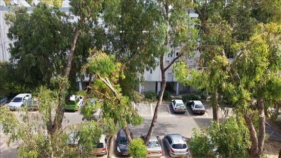 דירה להשכרה 3 חדרים בחיפה שד המגינים 114 קריית אליעזר