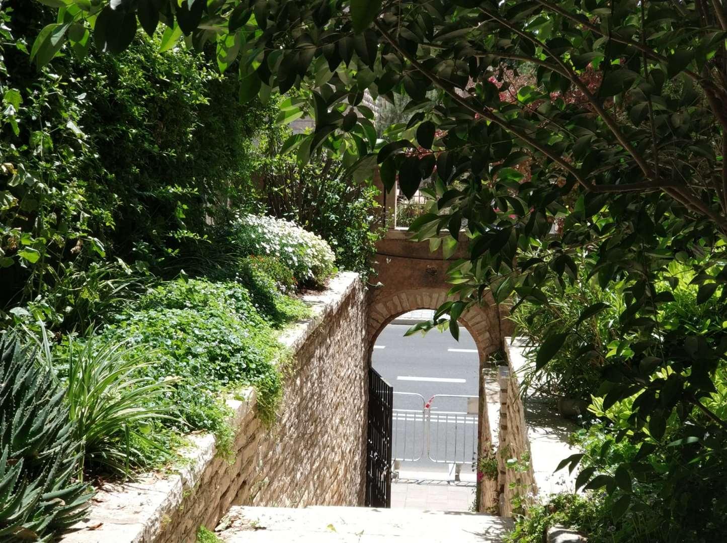 תמונה 2 ,דירת גג 3 חדרים בן מימון רחביה ירושלים