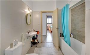 דירה, 4 חדרים, זית, חריש