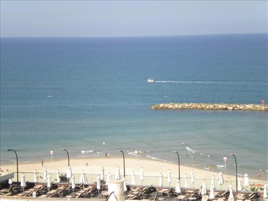 דירת גג להשכרה 3.5 חדרים בתל אביב יפו יהואש הצפון הישן