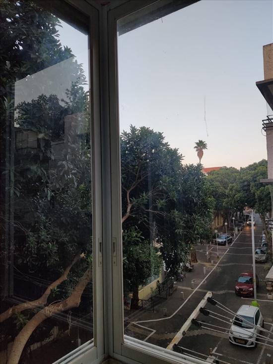 דירה להשכרה 3.5 חדרים בחיפה נורדאו הדר מרכז