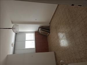 דירה, 4 חדרים, ביאליק, נס ציונה