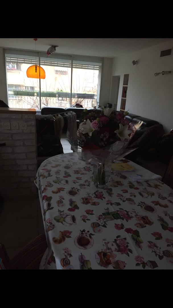 דירה, 3.5 חדרים, חביבה רייק , גב...