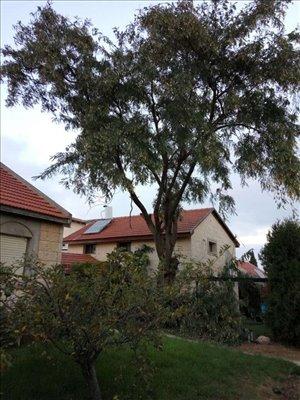 בית פרטי למכירה 9 חדרים בבית אל דקלה
