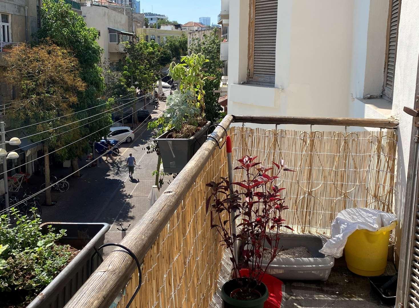 דירה, 2.5 חדרים, השומר, תל אביב ...