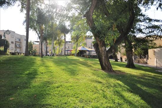 דירה למכירה 3 חדרים ביהוד מונוסון דוד מרכוס מרכז