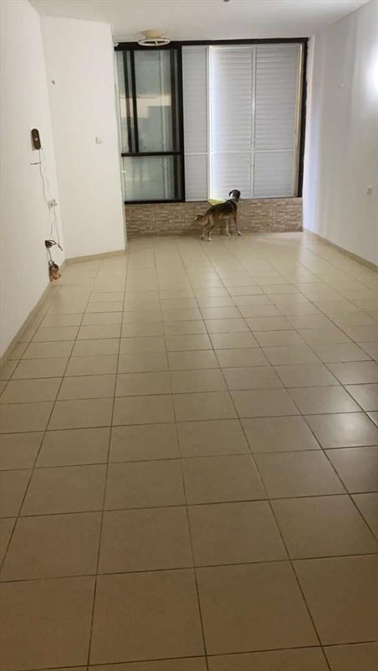 דירה למכירה 3 חדרים בפתח תקווה אצ''ל עין גנים