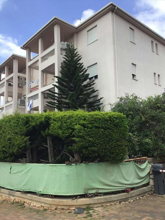 דירת גג למכירה 4.5 חדרים בחיפה קליל החורש ורדיה