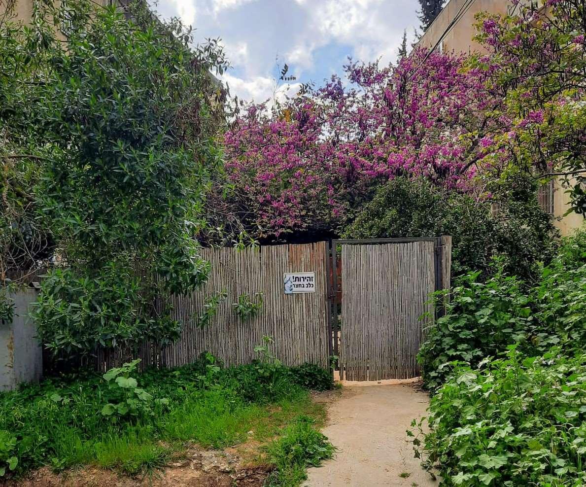 דירת גן למכירה 5 חדרים בירושלים יהושע בן גמלא