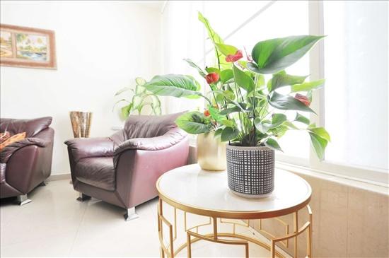 דירה למכירה 5 חדרים בראשון לציון חנה ומיכאל לוין רביבים