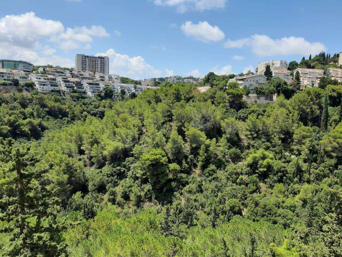 דירה למכירה 6 חדרים בחיפה אביגדור המאירי