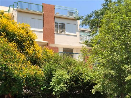 דירה למכירה 5 חדרים ברעננה דוד אלעזר 2 לסטר רבוצקי