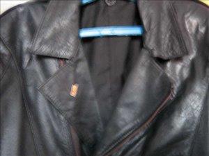 ביגוד ואביזרים - מעילים וג'קטים