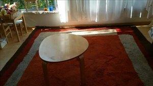 ריהוט שטיחים 1