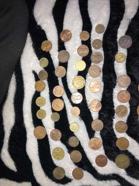 מטבעות ושטרות