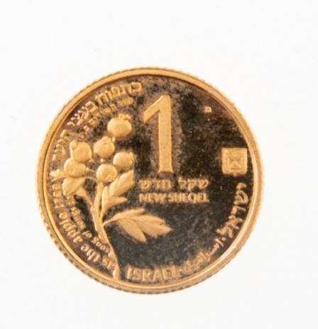 מטבע זהב ״העופר והתפוח״