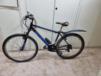 אופני הרים גלגל 29 דגם spartan